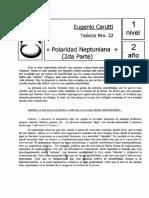 Polaridad Neptuniana (2da parte)