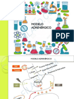 ADRENERGICO 1 pdf