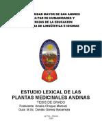 estudio-lexical-de-las-plantas-medicinales-andinas