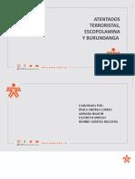 TERRORISMO , ESCOPOLAMINA Y BURUNDANGA