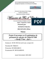 Projet d'ouverture et d'exploitation de gisement de calcaire de Ouled H'Bili « Bordj T'har - Jijel ».pdf