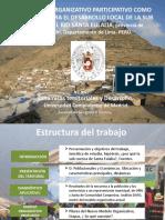 MODELO ORGANIZATIVO PARTICIPATIVO EN LA SUB CUENCA DEL RÌO DE SANTA EULALIA. PROVINCIA DE HUAROCHIRI