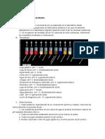 Informe Laboratorio.pdf