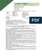 guÍa_castellano_9°-.docx