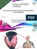 Anatomia Tiroides y paratiroides