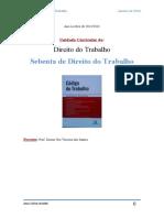 direito do trabalho (1).docx