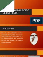 Semana 2. SISTEMA INMUNOLOGICO DE LOS PECES