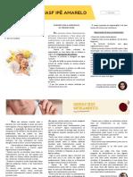 Jornal NASF Ipê Amarelo - 1a Edição