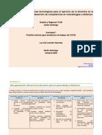 Luz atividad 1   Plantilla Revisión Guía Enseñar en tiempos de Covid (2) (1)