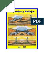 (msv-909) Originales y Reflejos
