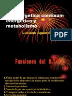 bioenergetica continum energetico y metabolismo.pdf