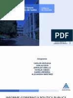 INFORME GOBIERNO Y POLITICA PUBLICA