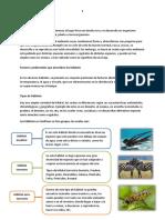 Anexo Guía 9 UPJFT