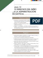 Manual de Derechos Humanos Para Jueces, Fiscales y Abogados II