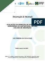 luizferreira.pdf