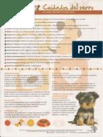 Guía Aceites en Perritos