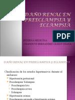 aaaaaaaaa   DAÑO RENAL EN PREECLAMPSIA Y ECLAMPSIA