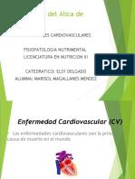 enfermedades cardiovasculares presentacion