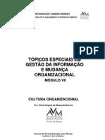 Tópicos Especiais em Gestão da Informação e Mudança Organizacional VII v2007