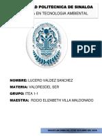 Clasificación de los valores.pdf