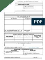Formato-Descripcin-de-cargo-profesional-y-soporte