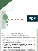 Lipogenese 2019