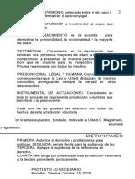 FormatoTramite Jurisdiccion Voluntaria por Sucesion Intestamentaria Conyuge.doc