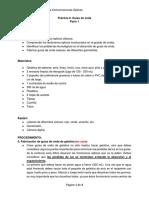 Práctica0_Guias de onda_mod.pdf