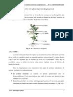 cours racines pdf