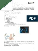 3actividadeshumanidadymedioambiente120520.pdf
