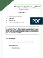 PROGRAMA--2DO-CUATRIMESTRE-2020 practica forence.pdf