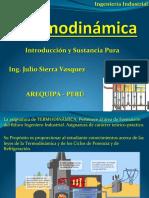 Capítulo I Introducción y Sustáncia Pura UCSM.pdf