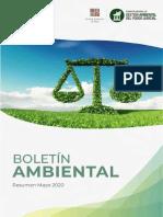 BOLETÍN AMBIENTAL N° 01.pdf