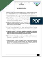 daso-informe final