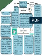Mapa Conceptual - Jose Castro 26.735.240.pptx