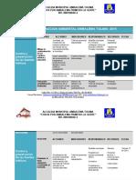 PLAN DE ACCION AMBIENTAL ambalema 2015