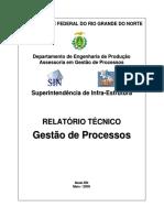 Relatorio_Gestao_Processos_SIN.pdf