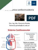 Clase Cardiocirculatorio 2019