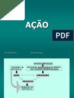 Ação - Flávia Pita - Slides - 2016.pdf