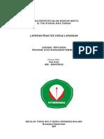 Laporan PKL Reni Aulia di Stimmindo