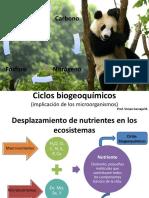 Tema 8 Ciclos biogeoquímicos (1)