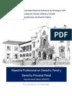 Maestria_DerechoPenal_DerechoProcesal Penal (1).pdf