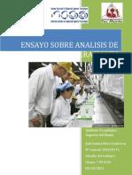 72220660-Ensayo-Sobre-Analisis-de-Operaciones.docx