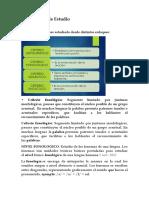 Perspectivas de Estudio.docx