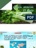APIOO (1)