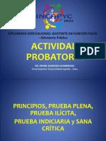 ACTIVIDAD PROBATORIA - PRINCIPIOS, PRUEBA PLENA, PRUEBA ILÍCITA, PRUEBA INDICIARIA Y SANA CRITICA..pdf