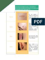 atlas de dermatologia.docx
