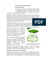 Interacción con el medio ambiente.docx