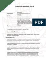 guiadocent_250473_curs_2020_es_ES.pdf