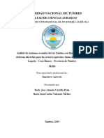 TESIS - VALENCIA Y CARRILLO.pdf